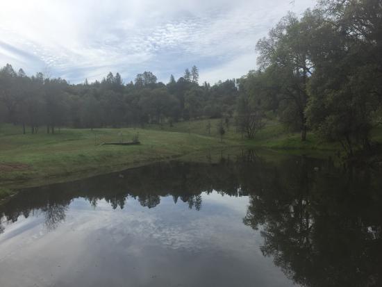 Grass Valley, Califórnia: Sivananda Ashram Yoga Farm