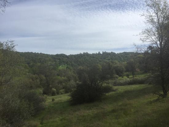 Grass Valley, Kalifornien: Sivananda Ashram Yoga Farm