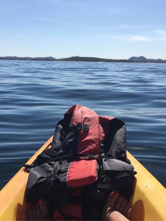 Go Paddle AZ : photo0.jpg