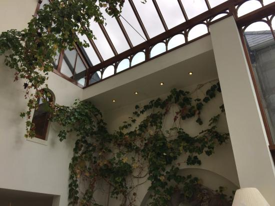 Cahernane House: Solarium, perfect for reading!