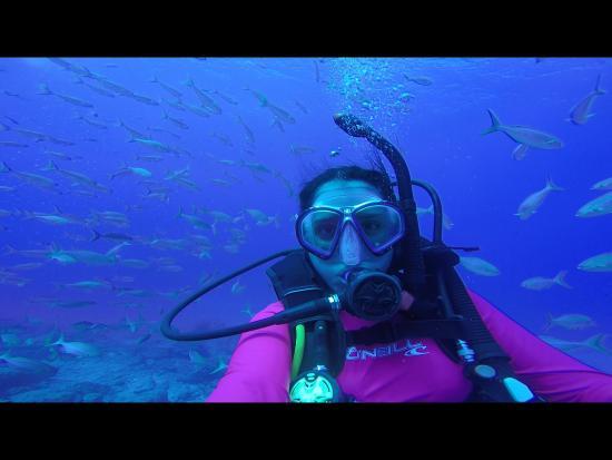 Drake Bay, Kostaryka: IMG_0126_large.jpg