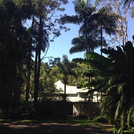 Federal, Avustralya: Beautiful gardens, Breakfast and pool at La Damia