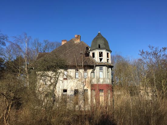 Eberswalde, Alemania: Aussicht aus Zimmer 6