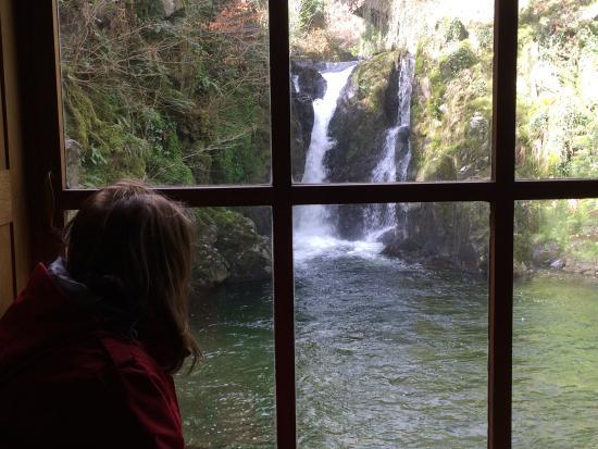 Lake District Tours: Hidden waterfalls