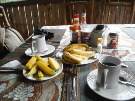 Nshongi Camp: First breakfast course, Nescafe or local tea, pineapple, mango, banana, then eggs and toast