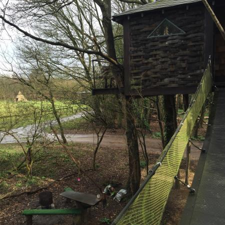 North Hill Farm: Wonderful treehouse glamping- all woodland themed- fire pit  and outdoor - Wonderful Treehouse Glamping- All Woodland Themed- Fire Pit And