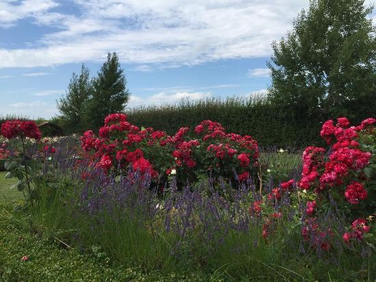 Botanical Garden Mellenthin