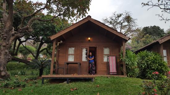 Stonewater Eco Resort: Cottage view
