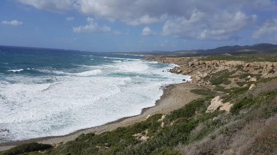 Cyprus Smart Tours