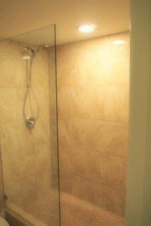 Wilton Manors, FL: Ein große Dusche in einem eher kleinen Bad aber völlig ausreichend !