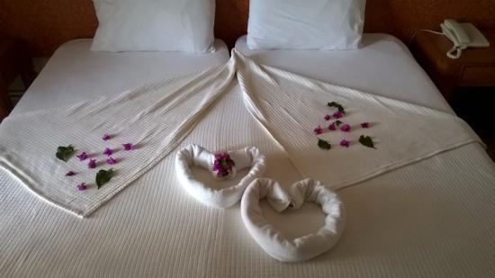 Harman Hotel: room