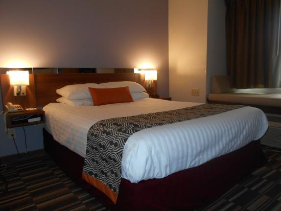 Microtel Inn by Wyndham Albany Airport: Single Queen Bedroom