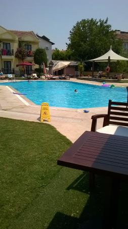 Harman Hotel: pool area