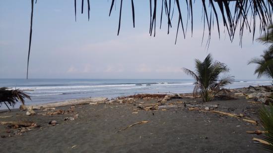 Снимок Playa Zancudo