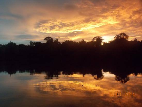 Region Loreto, Peru: pacaya samiria national reserve