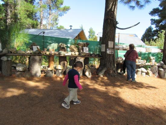 Museo de Piedras Patagonicas: mi mamá quedó con la sra. que a las preguntas de las piedras no contestò o con sonidos