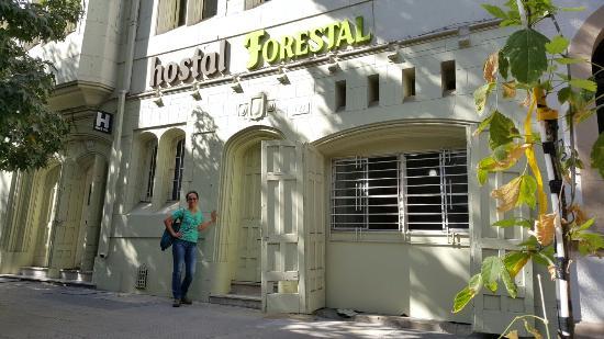 Photo of Hostal Forestal Santiago