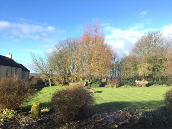 Bay Tree Farm: photo0.jpg