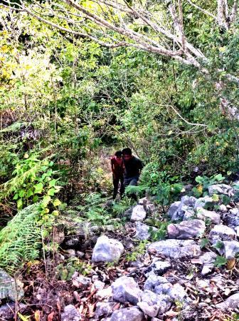 Jungle Eco Splash Tours