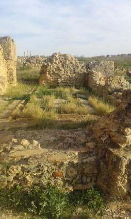 El Fahs, Τυνησία: Toilettes privées(payantes)