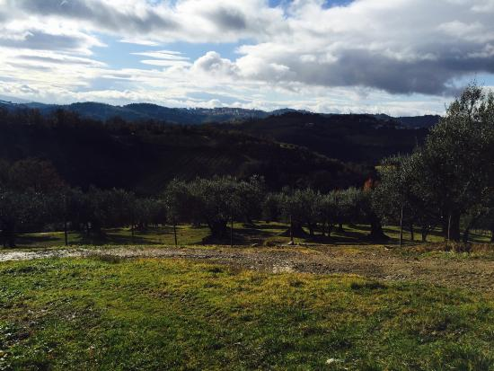 Montelaguardia, Italy: Relais Casamassima