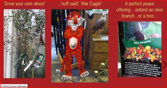 Crepe Myrtle Cafe : Auburn is the home of Auburn University!  War Eagle!
