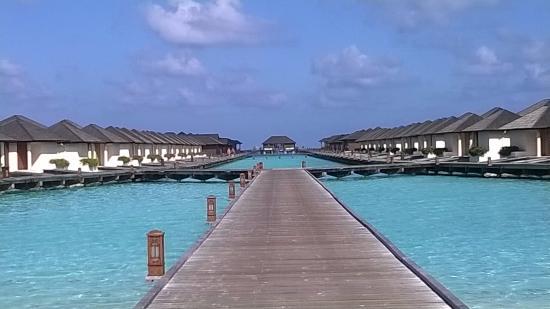 Paradise Island Resort & Spa: bungalows on water