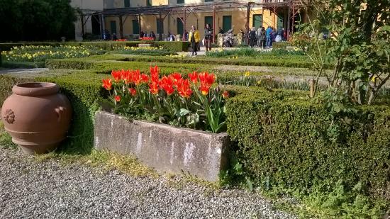 Villa Pisani Foto