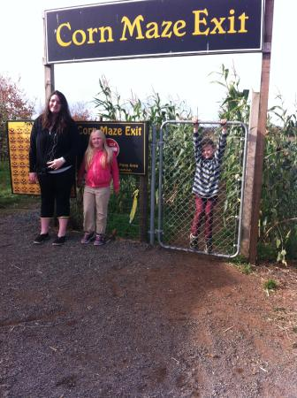 Applebarn at Taves Family Farms : Corn Maze completed!