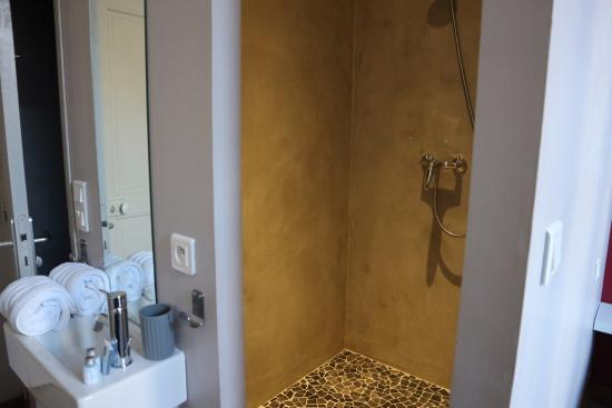 Cote Square B&B : Walk in shower