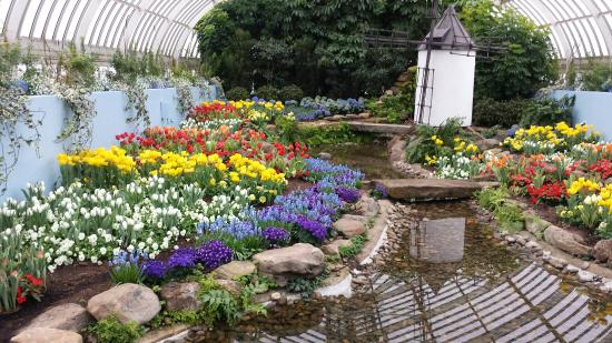 Spring Flower Show 2016 Picture Of Phipps Conservatory And