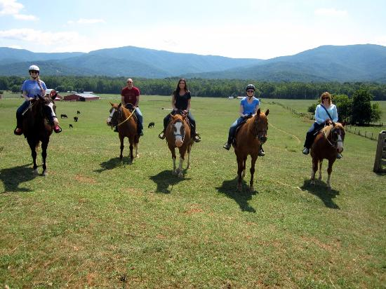 Piney Hill Bed & Breakfast : nearby riding stable