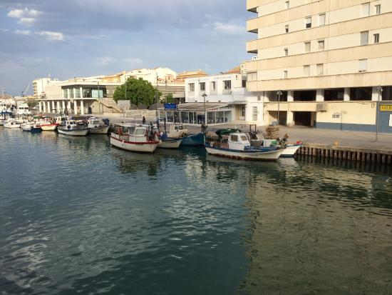 Le Restaurant Fotografia De Hogar Del Pescador Gandia Tripadvisor