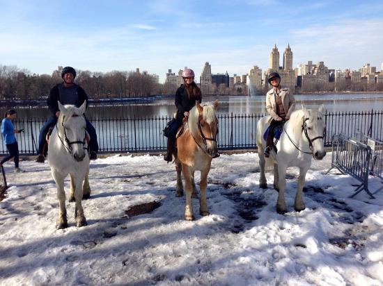Chateau Stables/ NYC HorseBack