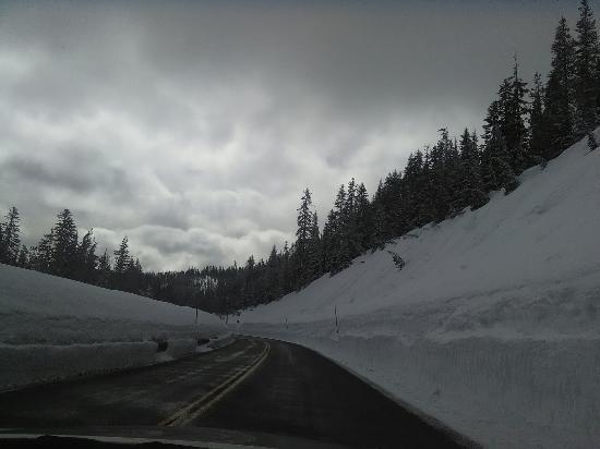 Prospect, Oregon: IMG_20160327_111936_large.jpg