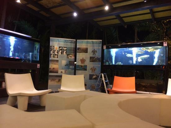 Nai Yang Beach Resort and Spa: Seating in reception