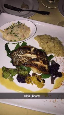 Black bass picture of mark 39 s american cuisine houston for American cuisine houston