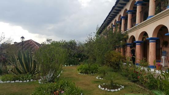 Hotel Rincon del Arco: jardín de arboles frutales
