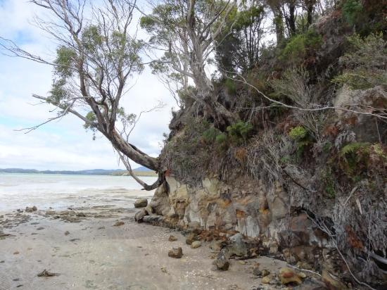 Tasmania, Australia: Southport Lagoon
