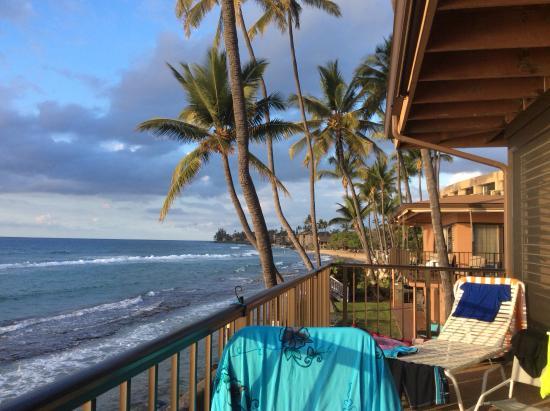 Maui Sands Photo