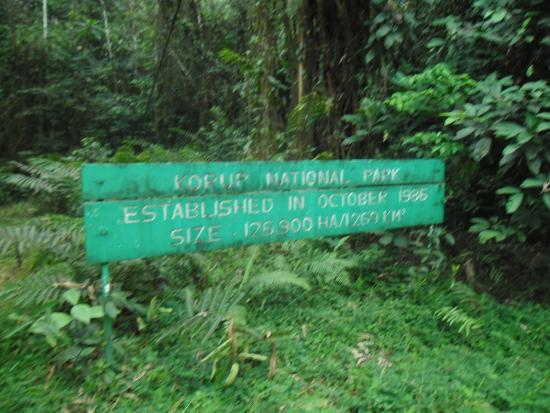 Korup National Park, Camerún: Welkom