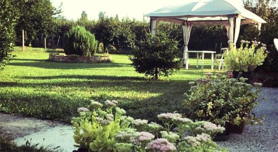 Cona, Italien: Giardino esterno