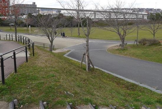 Shii Park