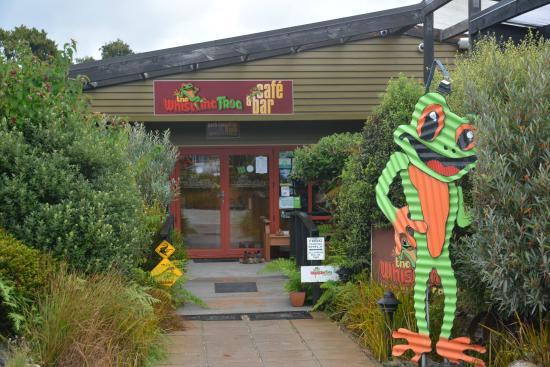 Papatowai, Новая Зеландия: The Whistling Frog