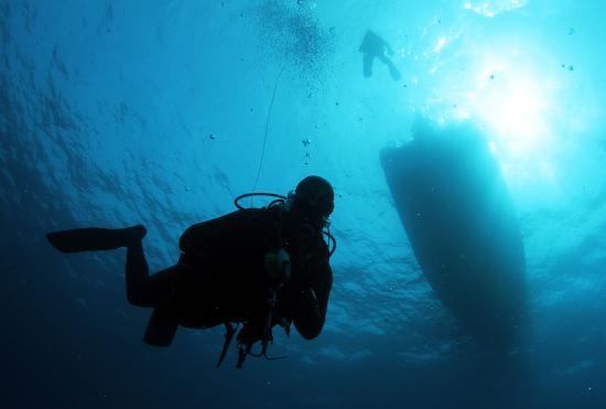 Jupiter, Φλόριντα: Diving