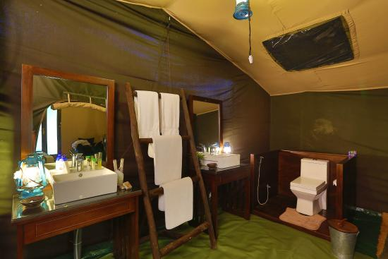 air conditioned tent yala picture of leopard trails camp yala sri rh tripadvisor co za