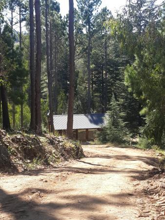Cabañas Los Arboles: 20160327_113101_large.jpg