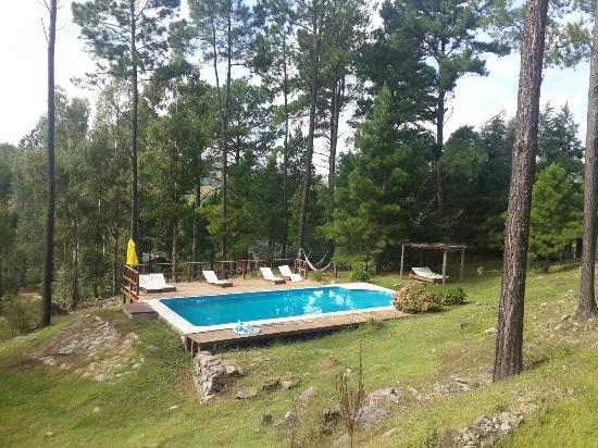 Cabañas Los Arboles: 20160326_111243_large.jpg