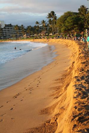 The Westin Maui Resort Spa Ka Anapali Beach Erosion From Heavy Surf