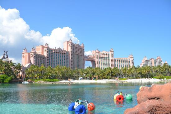 in The Dig - Picture of Marine Habitat at Atlantis, Paradise Island ...